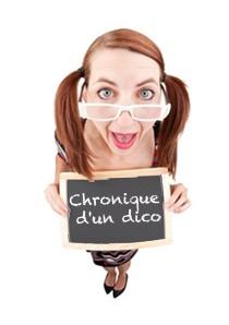 Chronique d'un dico #1: Jubjoter